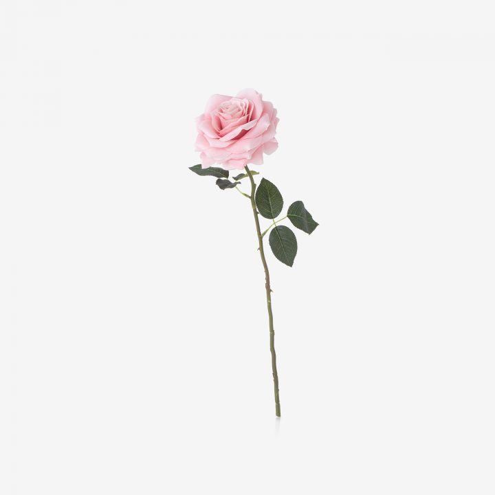 ROSE ורד מלאכותי